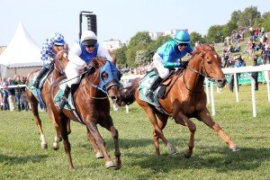 Stokell on Mirabelle Del Sol wins