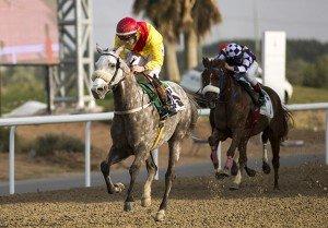 Joyous Dream wins at Al Ain
