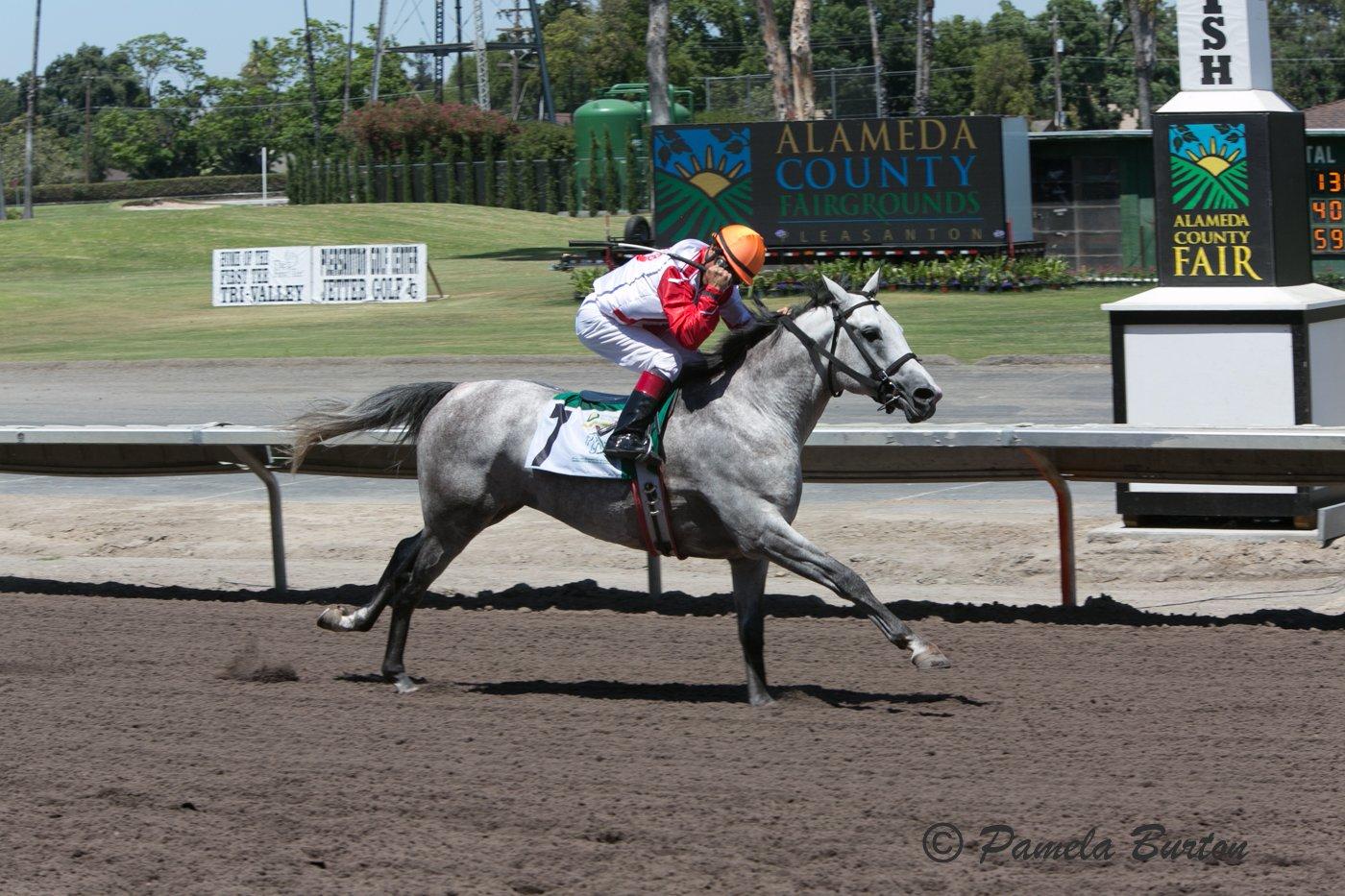 Sand Victor wins in Pleasanton 2016