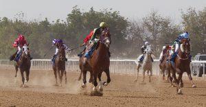 Sharjah File photo Pamela Burton