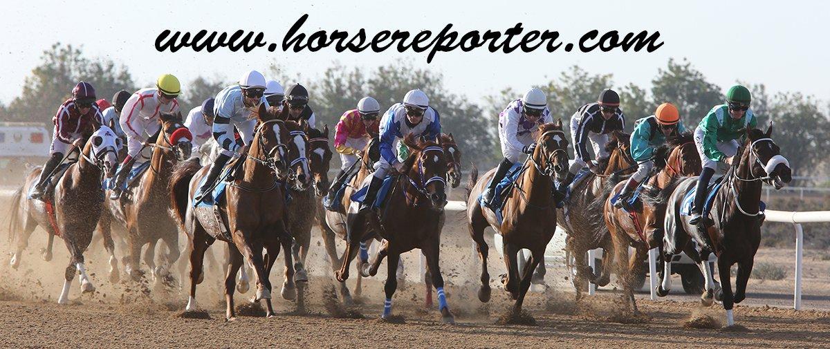 horsereporter.com