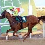 More Hope wins Wathba Stallions Cup