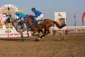 McCutcheon wins on Al Sahm