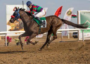 Dalbark winning the 2018 Apprentice race in Oman