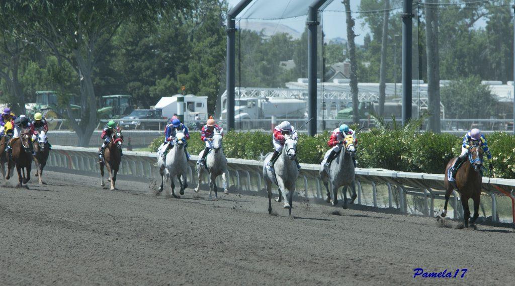 Paddys Day wins at Pleasanton racing 2017