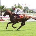 Deryam winning in Toulouse