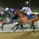 DIESE wins Al Ruwais Cup