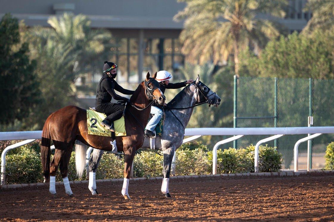 Credit: Jockey Club of Saudi Arabia // Douglas DeFelice