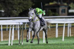 Ottoman wins the Arabian Triple Crown R3(credit: Emirates Racing Authority)